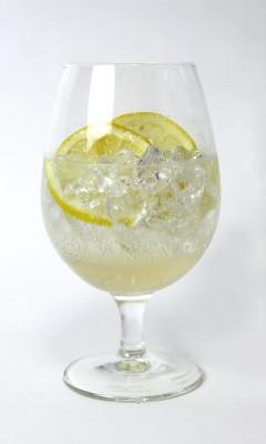 フレッシュレモンハニーソーダ